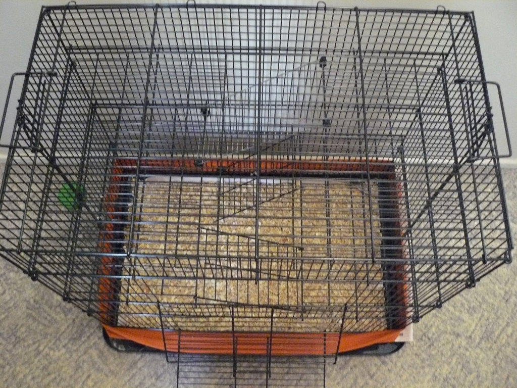 Rabbit cages for sale melbourne luxury wooden double for Small guinea pig cages for sale