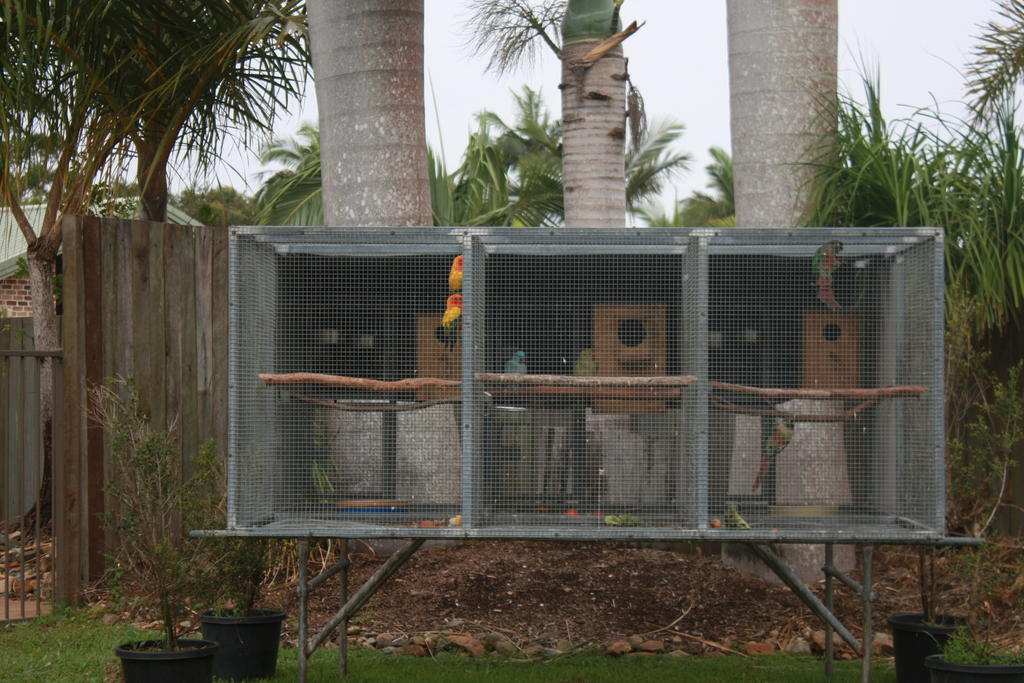 For Sale Solid Suspended Aviary With Stand