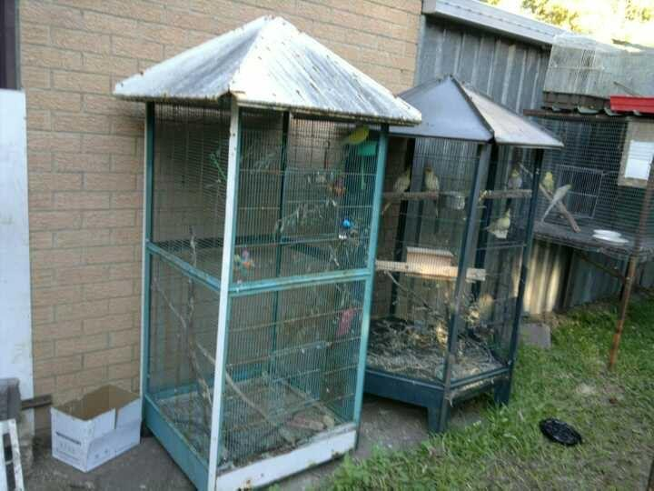 For Sale Suspended Aviaries And Other Assorted Cages