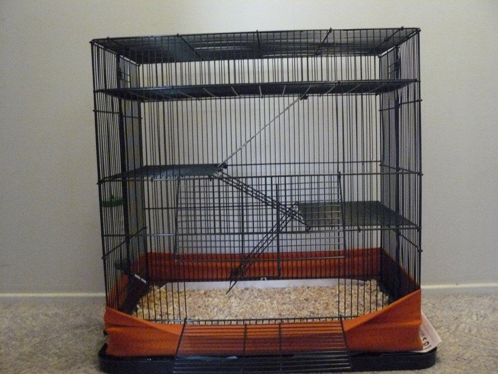 For sale guinea pig cage 4 floors levels for Small guinea pig cages for sale