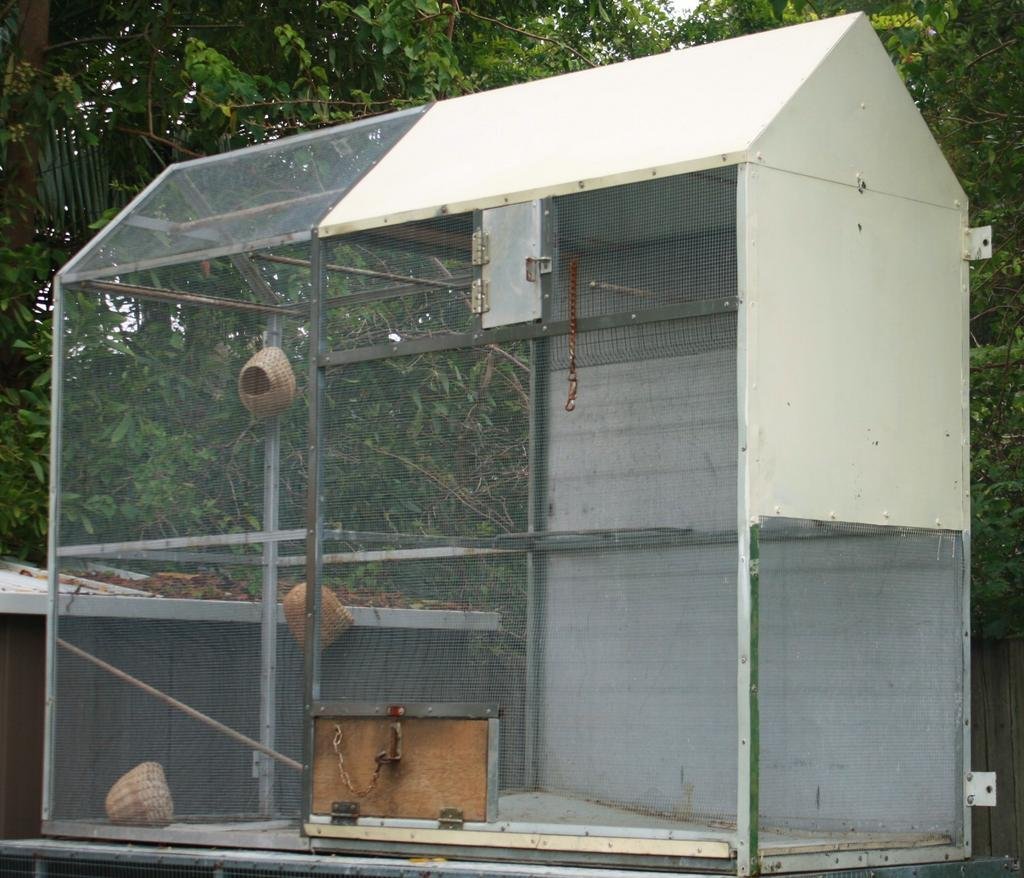 For Sale Suspended Aviary Wall Or On Stand