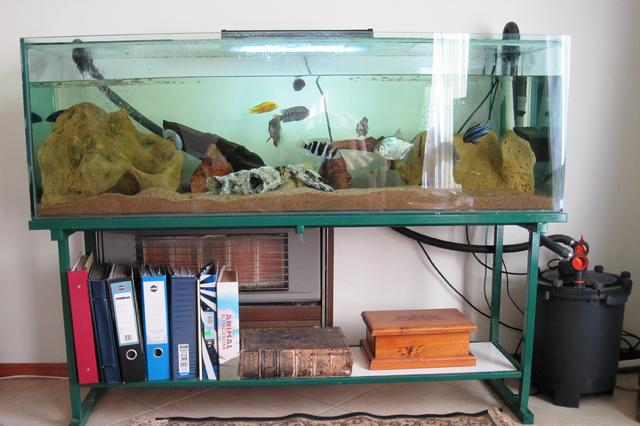 for sale 5ft fish tank stand with fish accessories. Black Bedroom Furniture Sets. Home Design Ideas